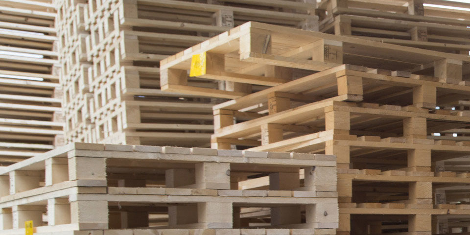 5 Interesting Facts About Pallets Brookfield Pallets